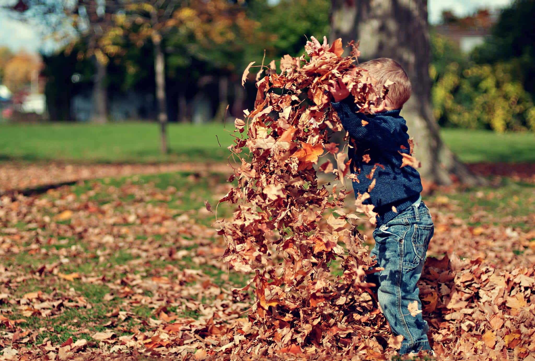 Training: Reclaiming the playful – engaging play as a professional tool